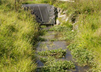 Bachoffenlegung Fenngraben, Gossau