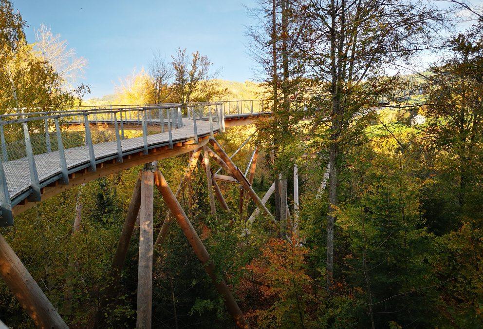 Treetop Path Neckertal, Mogelsberg